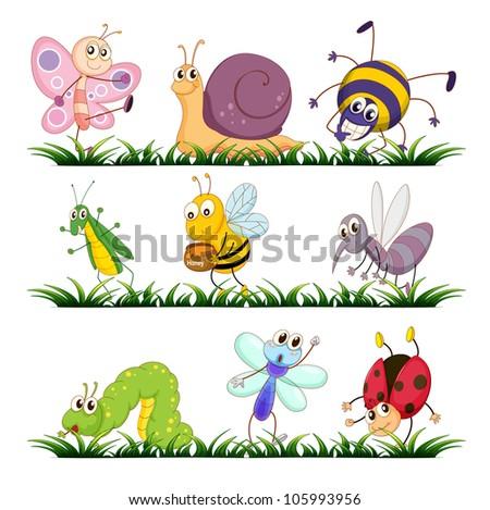 Illustration of bugs on grass - stock photo