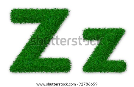 Illustration of capital and lowercase letter Z made of grass - stock photo