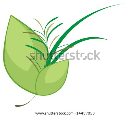 Illustration of culinary herbs bouquet on white background