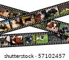 Illustration of filmstrips with images of dogs - stock vector