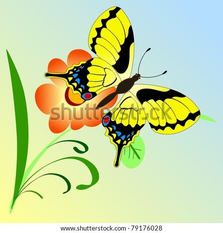 Illustration of flower's composition with butterfly