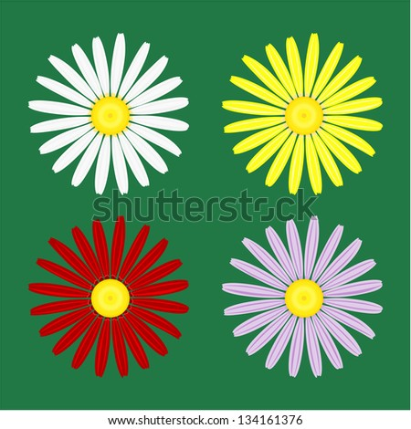 Illustration of flowers of camomile. - stock photo