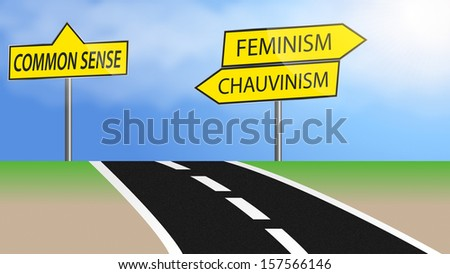 Illustration of heading for feminism and chauvinism or just use common sense - stock photo
