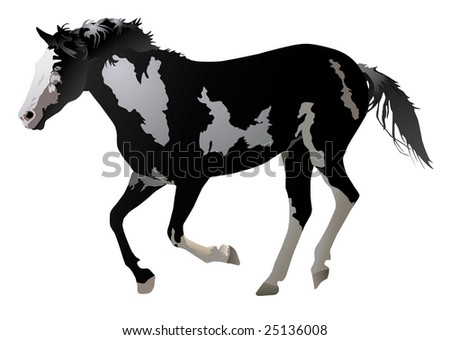 Illustration of horse galloping on white background