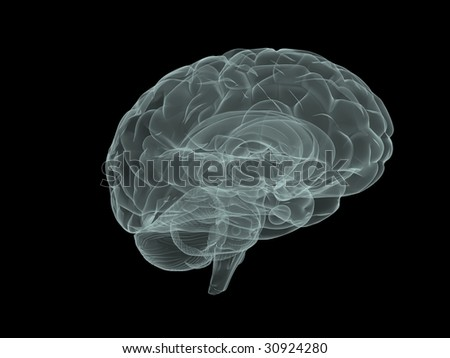illustration of human brain - stock photo