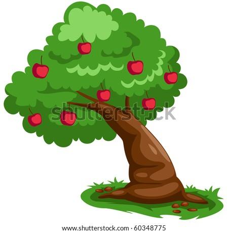 illustration of isolated apple tree on white background - stock photo