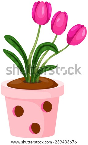 illustration of isolated pink tulips in a pot on white - stock photo