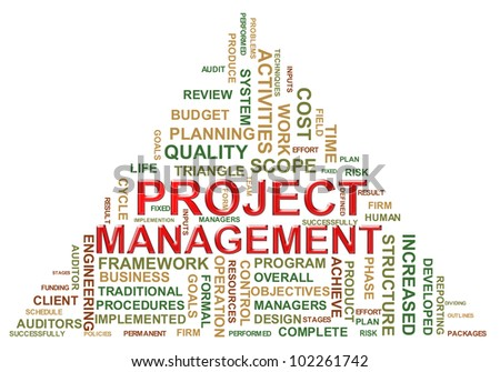 Illustration of project management wordcloud. - stock photo