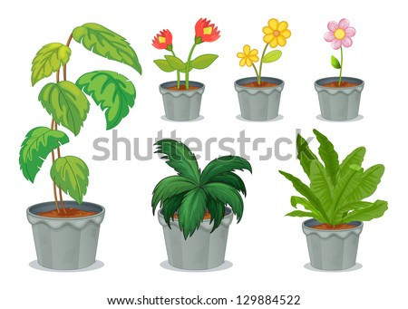 Illustration of six pots with plants on a white background