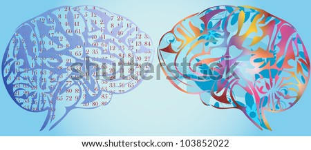 Illustration of stylized colored human brain - stock photo
