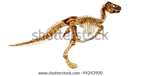 Illustration of the skeleton of a Tyrannosaurus Rex (T-Rex) isolated on a white background - stock photo
