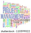 Illustration of word tage of project management - stock photo