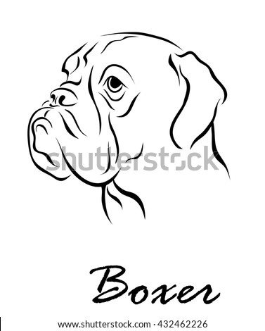 Illustration shows a dog breed Boxer