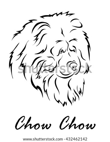 Illustration shows a dog breed Chow Chow