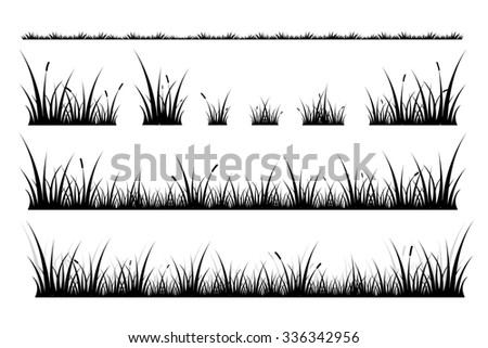 Illustration silhouette grass on white background.