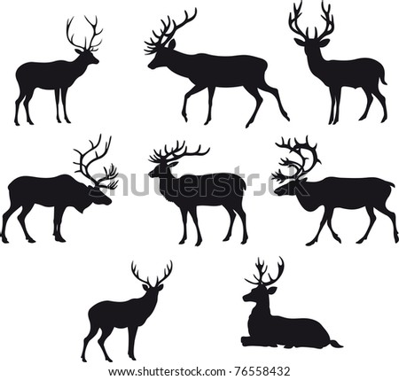 illustration with deer silhouettes isolated on white background - stock photo