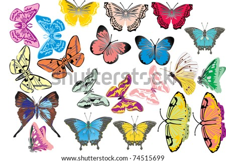 illustration with different butterflies isolated on white background