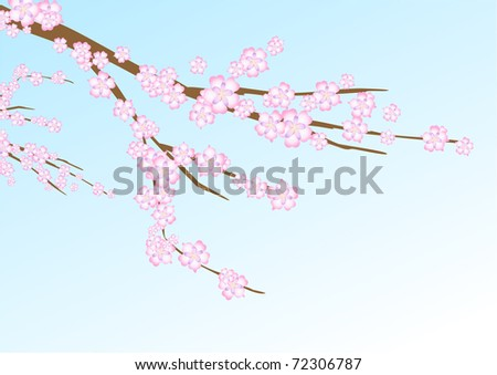 illustration with sakura (cherry blossom) branch on the navy blue background