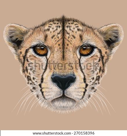 Illustrative Portrait of a Cheetah. The cute face of a Cheetah. - stock photo