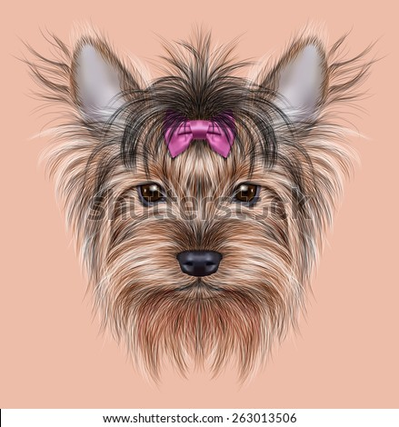 Illustrative Portrait of a Domestic Dog. Cute head of Yorkshire Terrier on pink background. - stock photo