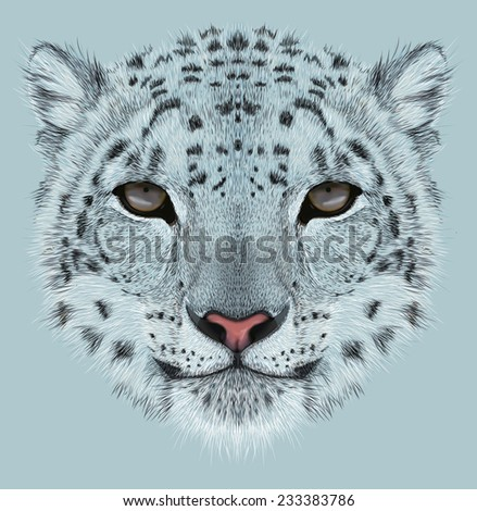 Illustrative Portrait of Snow Leopard. - stock photo