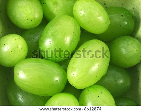 image from fruits series: wet grapes fruits