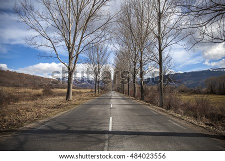 Image from the middle of an empty countryside road in a dry and sunny winter day.