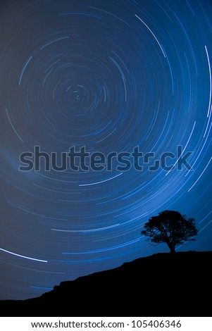Image of a isolated tree silhouette on a hill with a blue background at night with startrail - stock photo