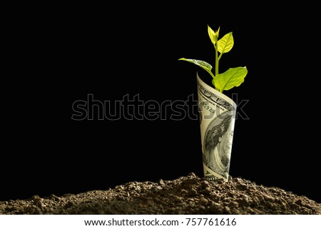 Image of bank note with plant growing on top for business, saving, growth, economic concept on black background