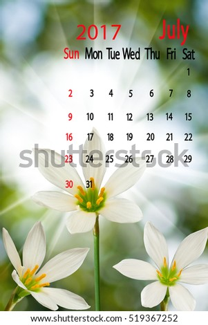 Image of beautiful flowers narcissus on green background close-up. Calendar for July 2017. Beautiful flowers in the summer garden Calendar with white narcissus flowers on summer garden