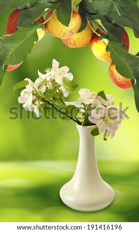 image of blossoming branches in a vase   and branch with apples on a green background