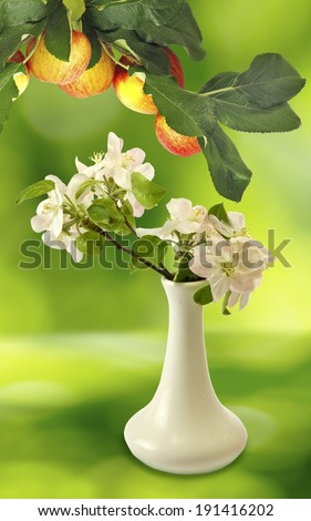 image of blossoming branches in a vase and branch with apples on a green background closeup