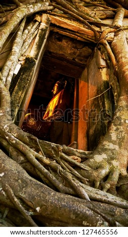 Image of Buddha at Wat Bangkung, Ampawa, Samutsongkram, Thailand. - stock photo