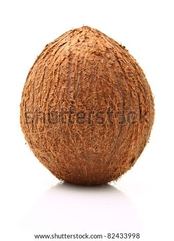 Image of coconut isolated on white - stock photo