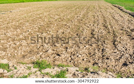 image of cultivation area for background usage. - stock photo