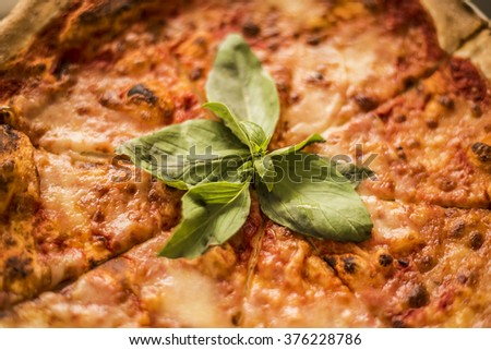 image of delicious pizza with whole green leaf basil close-up