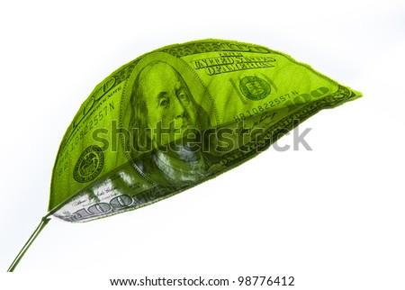 Image of dollars on a piece of plant - stock photo