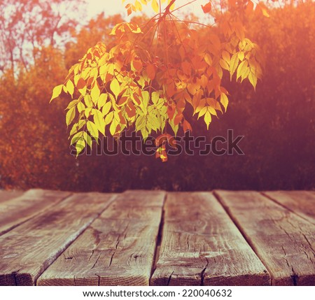 image of front rustic wood boards and background of fall leaves in forest. - stock photo