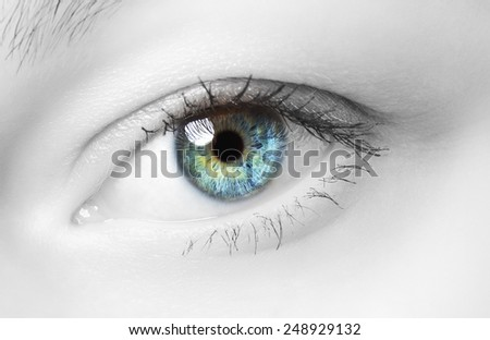 image of human eye, blue and green iris - stock photo