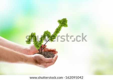 Image of human hands holding plant shaped like arrow - stock photo
