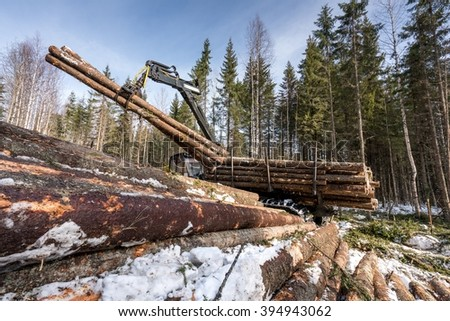 Image of logger loads harvested trunks in forest - stock photo