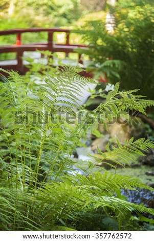 Image of lush japanese style garden with red foot bridge.  - stock photo
