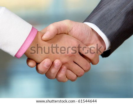 Image of partners handshake while striking deal - stock photo