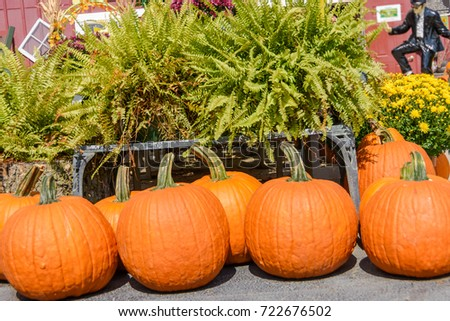image of pumpkin decoration for happy Halloween holiday season.