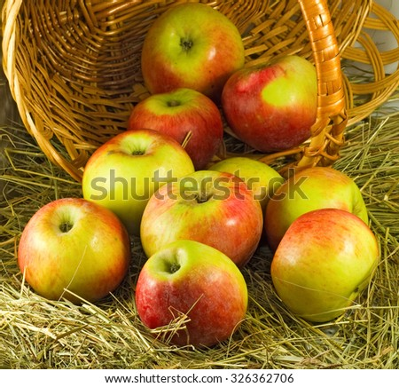 image of  ripe apples in a basket close-up - stock photo