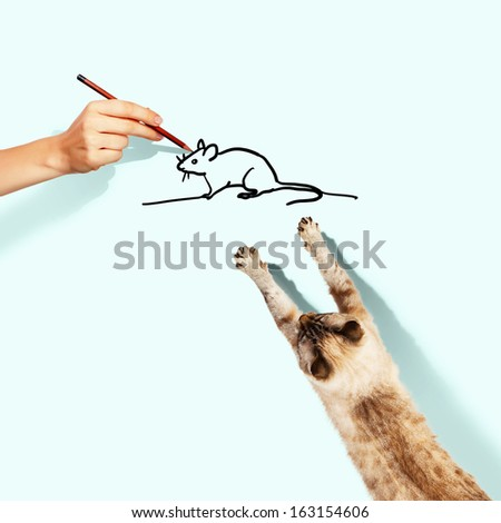 Image of siamese cat catching drawn mouse - stock photo