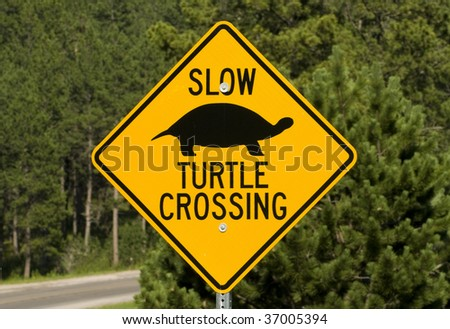 Image of unique turtle road crossing sign.