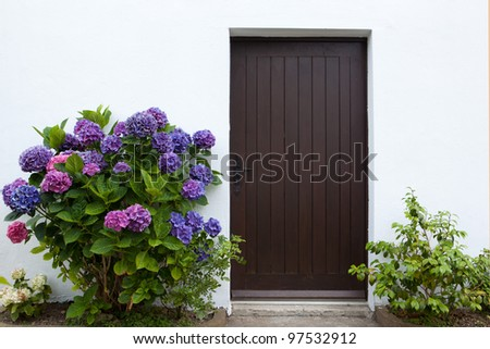 image of vintage style door in village house with flowers growing on the sides of it - stock photo