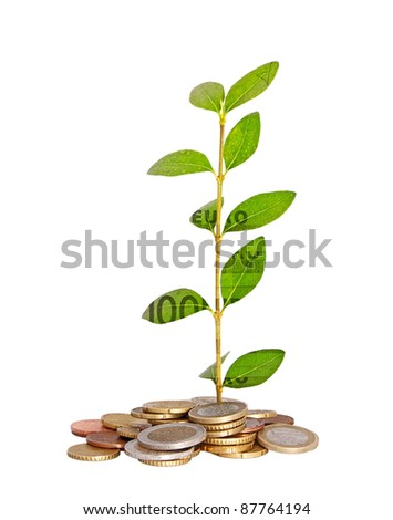 imaginary euro plant with water drops and imprint - stock photo