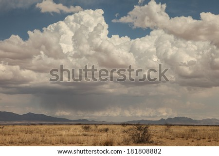 Immense formation of white clouds, with gray cloud underneath plus row of white clouds, over dry grasslands/Buildup of Clumpy White Clouds over Dry Prairie/Towering clouds over semi-desert in winter - stock photo